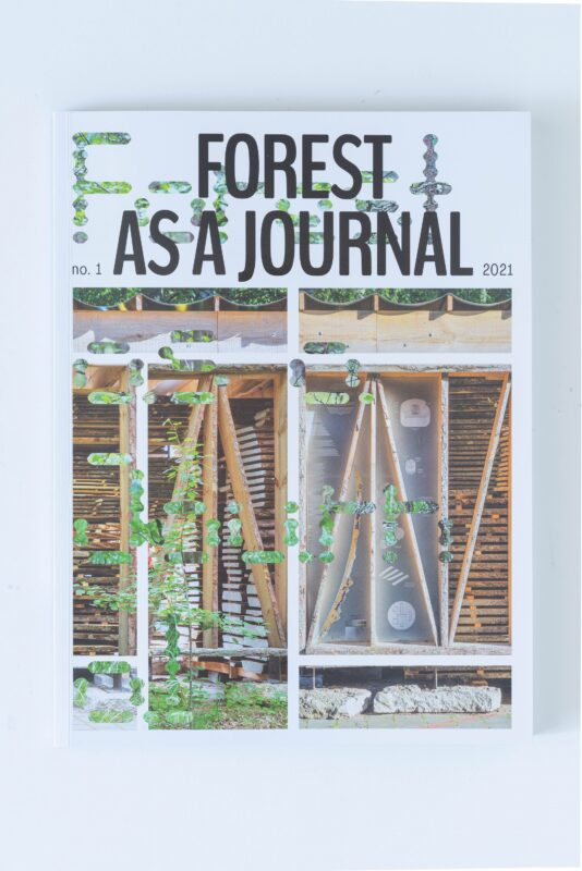 From Lithuania to the world: a new cultural magazine titled * as a Journal is launched